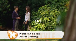 14 november 2015 - TV zender RTL4,  'De week van de coach'  Art of Growing in Utrecht.